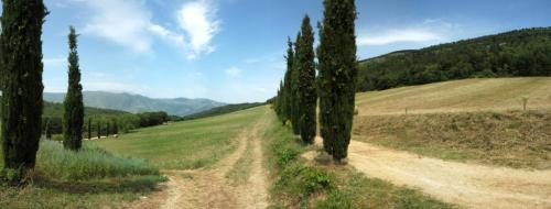 sentiero per la visita del lupo all'interno della Riserva di Monte Rotondo