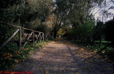 Riserva del Pescara