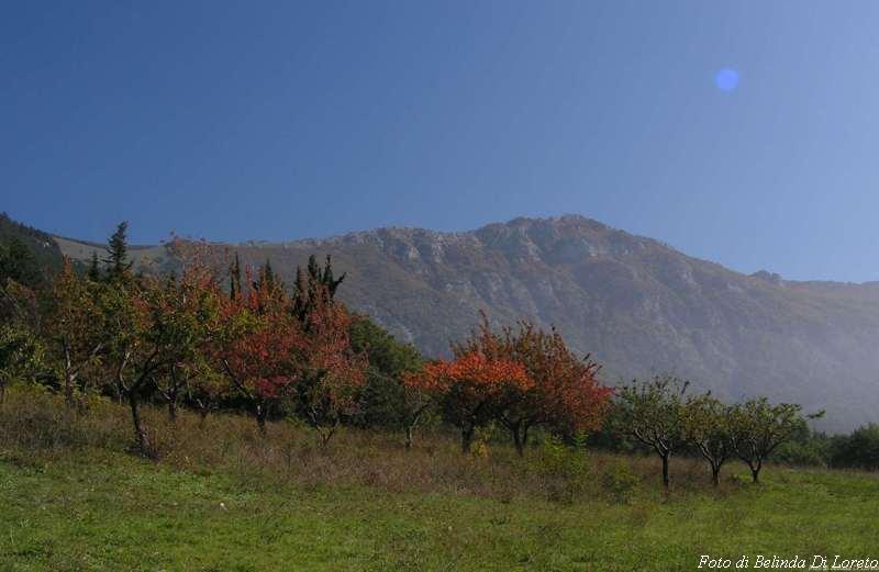 Riserva naturale di Monte Rotondo